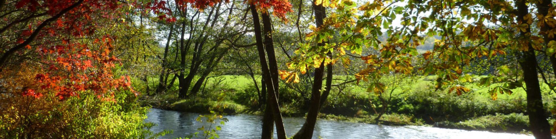 Arboretum Lenoir - Rendeux