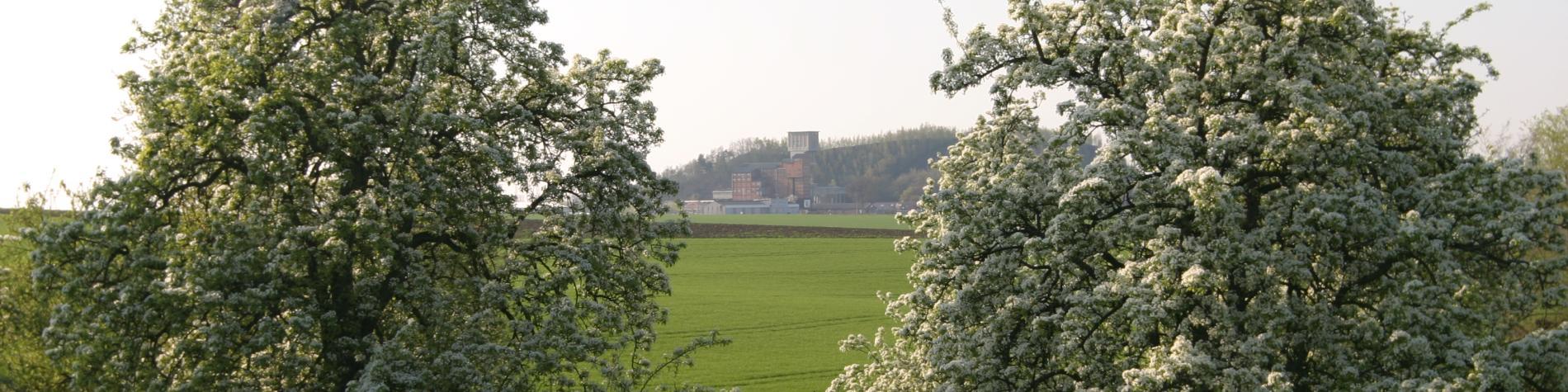 Le petit train touristique de Blegny-Mine Alentours