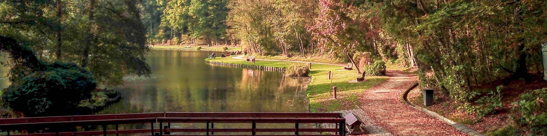 Bois des Rêves - Louvain-la-Neuve