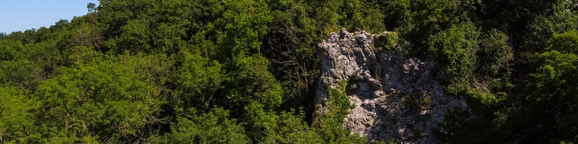 Grotte de Spy - site paléolithique - Homme de Néandertal