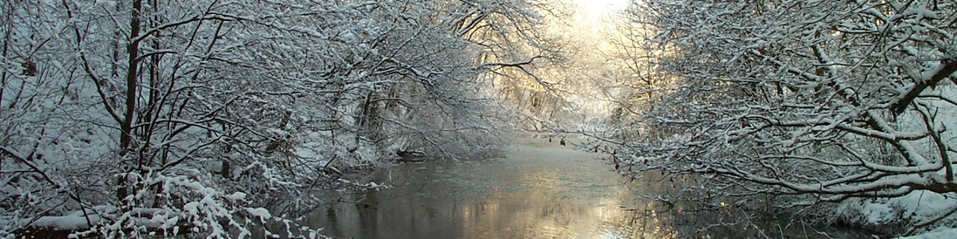 Canal Bernistap
