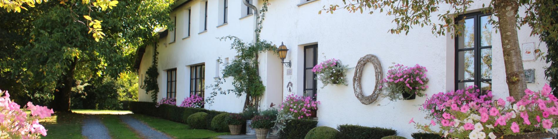 Maison d'hôtes - La Cascatelle - Léglise