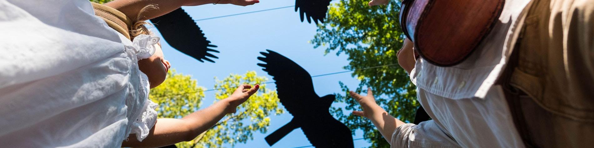 Parc Chlorophylle - Aywaille - oiseaux