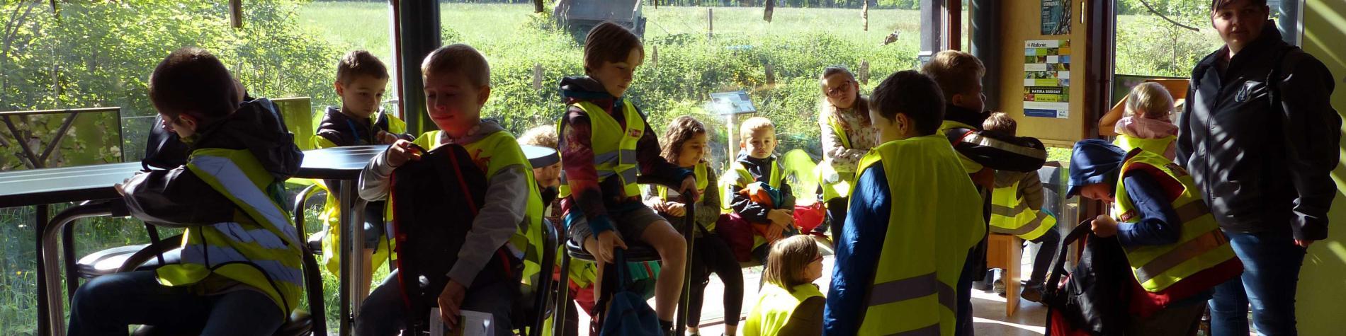 Classe verte au musée de la forêt et des eaux Berinzenne