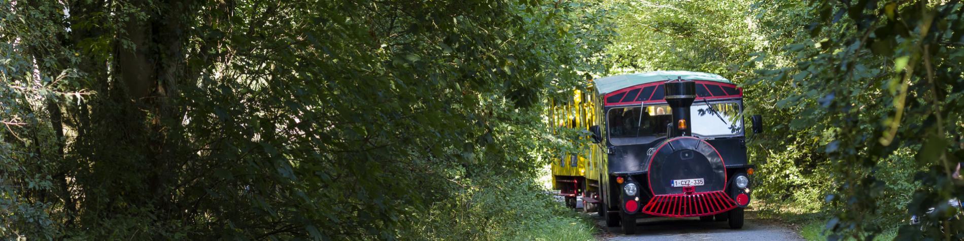 Croco Express- train touristique- des Lacs-de l'Eau-d'Heure