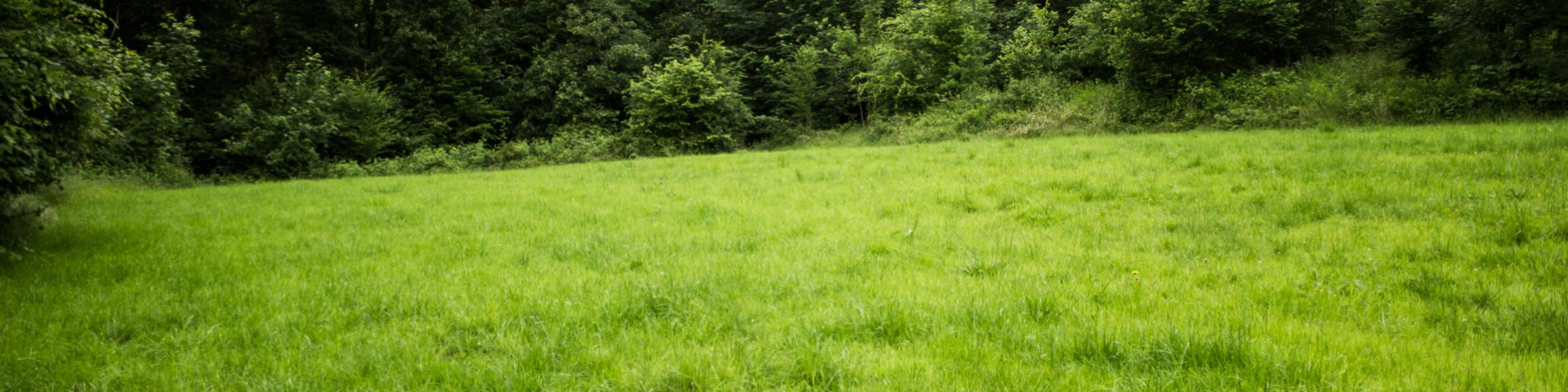 Wallonie Nature - Logement jeunes