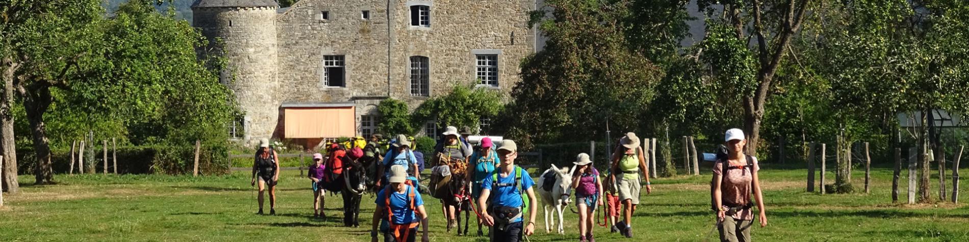 Escap'Anes - Randonnées - ânes - Marche-en-Famenne
