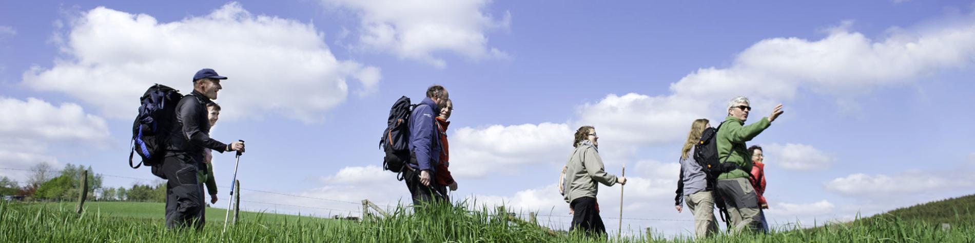 Ardennes-Rando - treks - randonnées - Ardenne