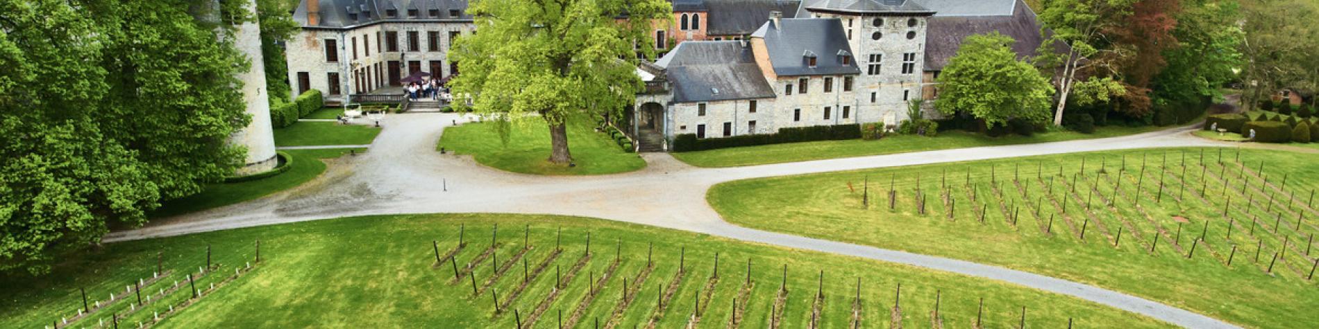 Château de Bioul - Discover Belgium - Vins wallons