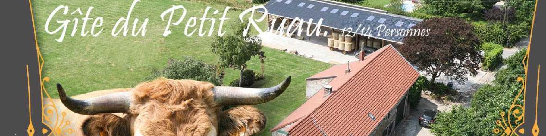 Gîte rural - Le Petit Ruau - Biesme