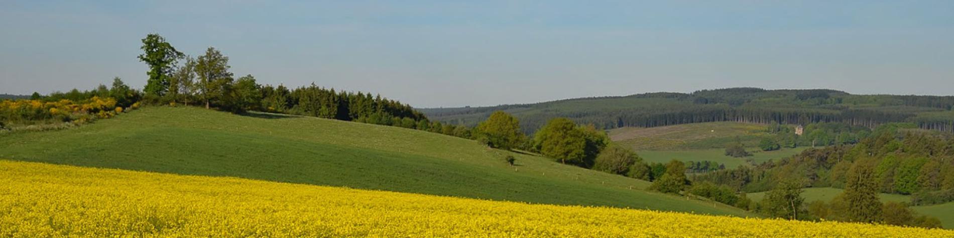Europ'Aventure - randonnées sur mesure - Ardenne