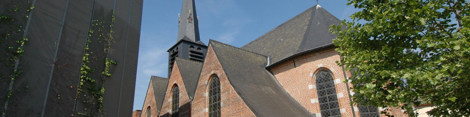 Ath - St-Martin - église - arbre - place