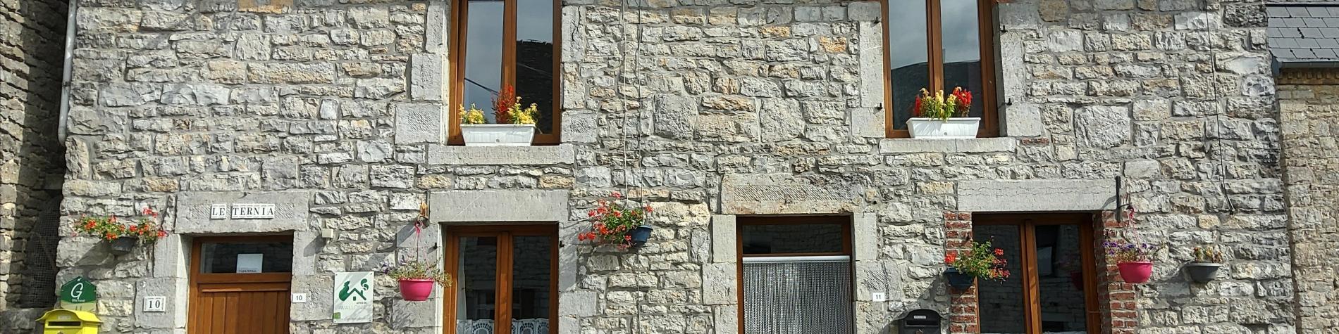 Gîte rural Le Ternia - Mazée - Vue de la façade