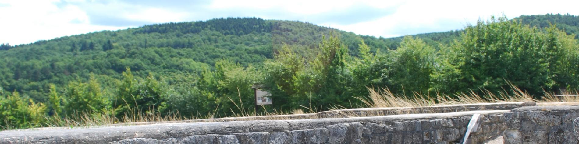 Archéologie - antiquité - préhistoire - musée - Malgré-Tout - Treignes