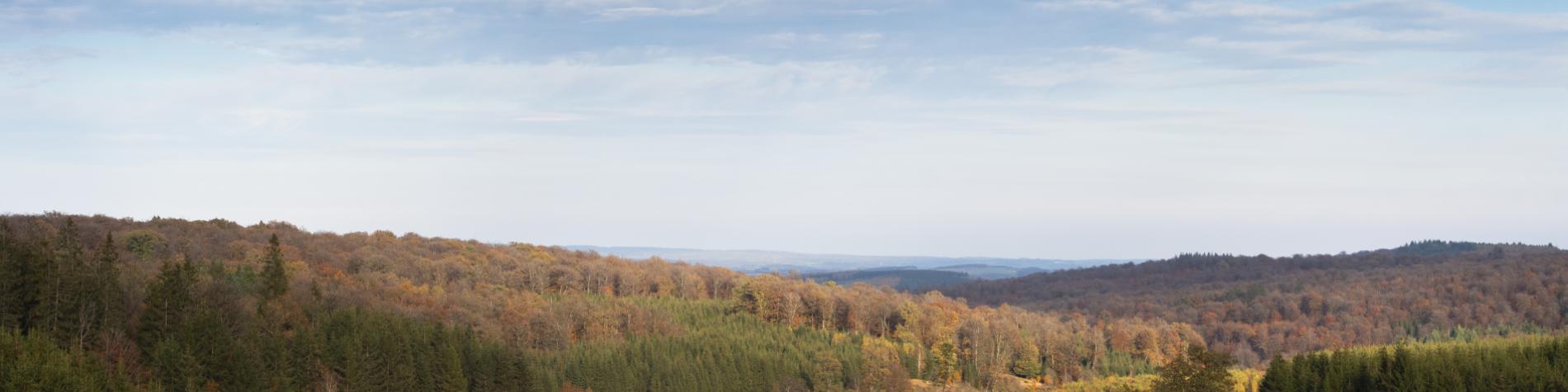 Maison du Tourisme - Sport - Wallonie nature