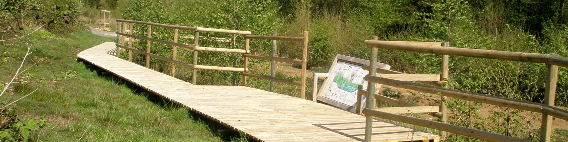 Espace naturel du Sawhis - Havelange - Vue du caillebotis