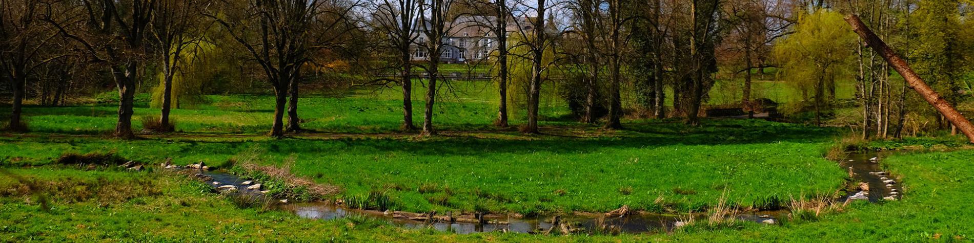 Le Bois de Cheumont