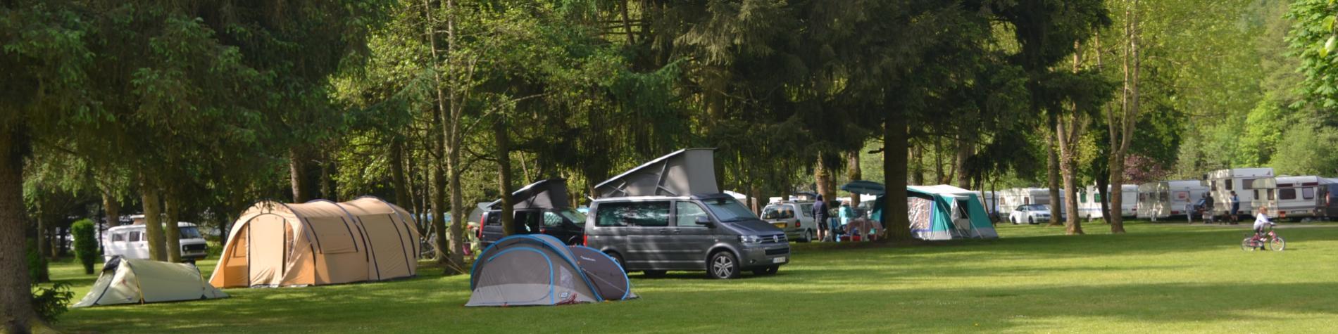 Camping - Ardennes - La Roche en Ardenne - Nature