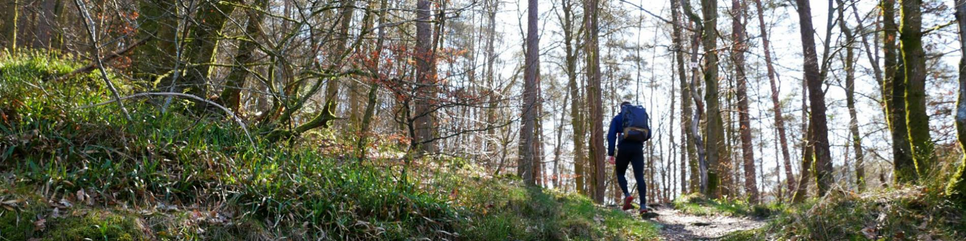 Forêt de la Semois -la Houille - terre sauvage - massif naturel -