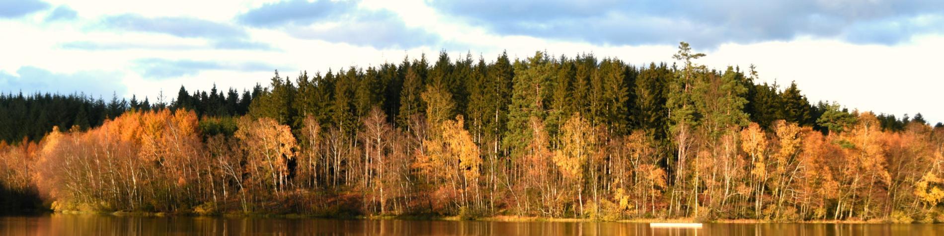 Réserve naturelle des Epioux - Florenville