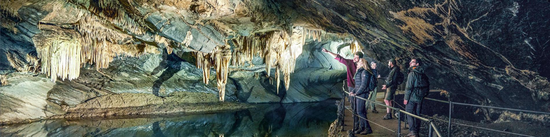 Grotte du Domaine de Han-sur-Lesse, une des plus belles d'Europe - Salle des Draperies