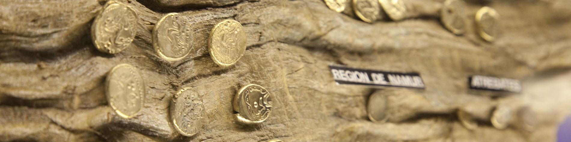 Musée - Archéologie - Tournai