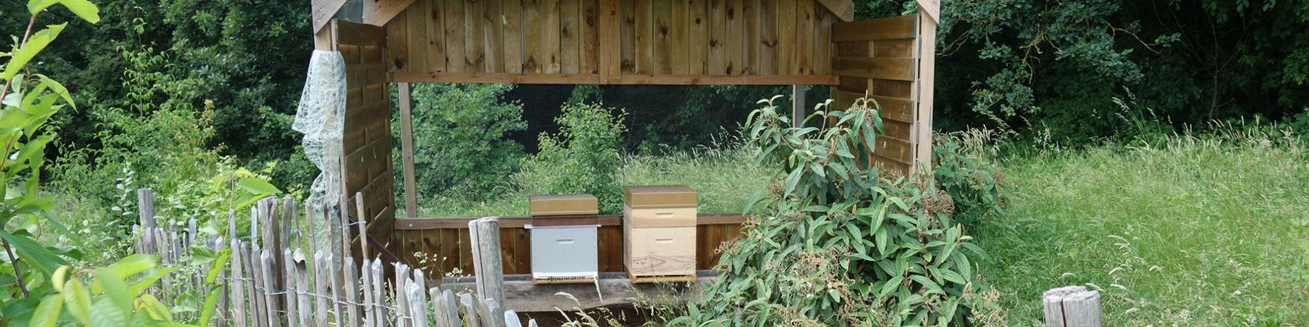 Verger - rucher - didactique - Couillet - Parentville