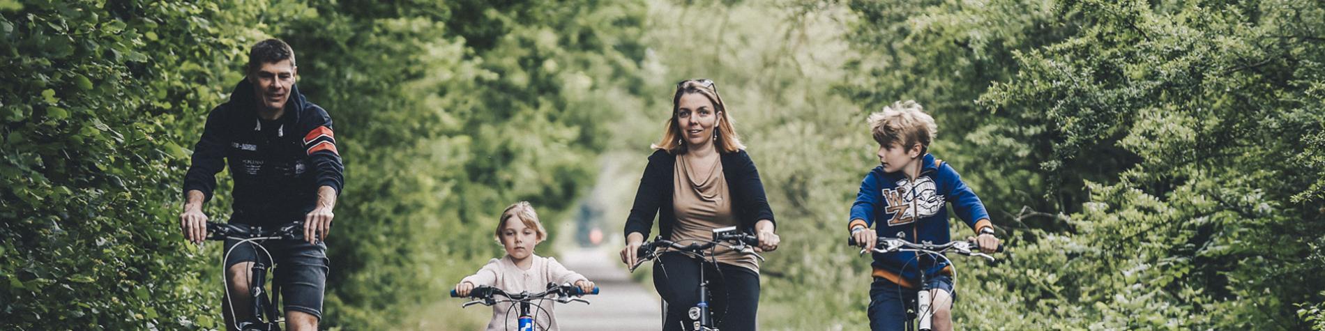 Ardenne Vélos - Location - VTT, vélos et vélos électriques à Houyet