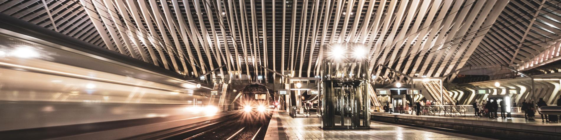 Gare - TGV - Liège - Guillemins - Santiago Calatrava