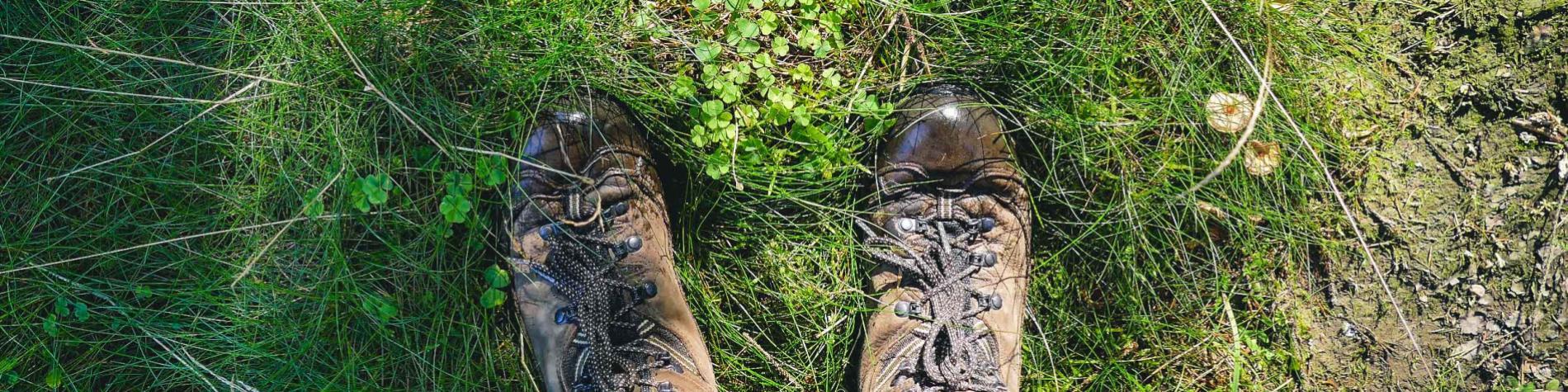 Chaussures - randonnee