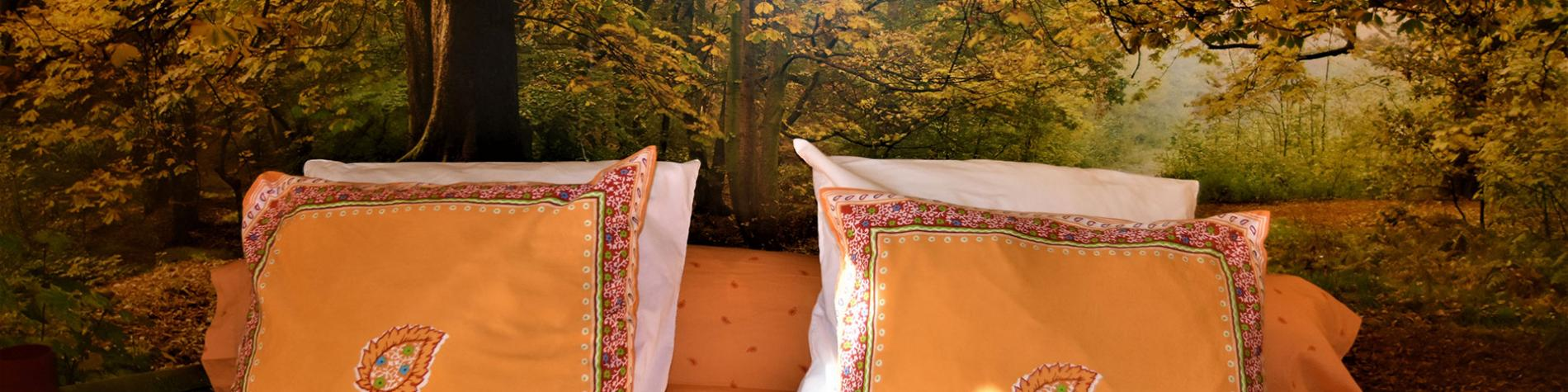 Au fil des saisons sur la Wiels - Chambres d'hôtes - Fauvillers