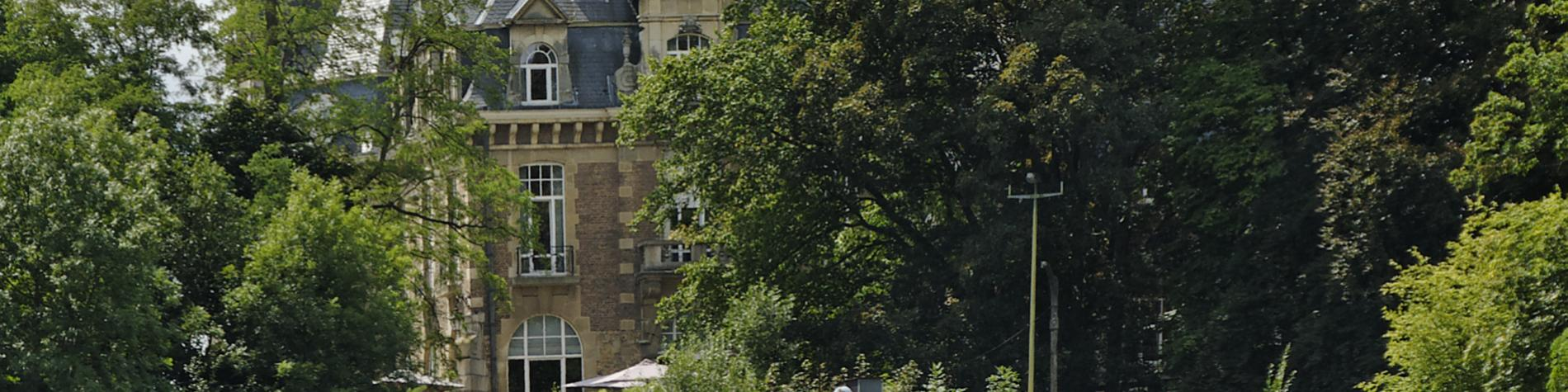 Château - Namur - arbres