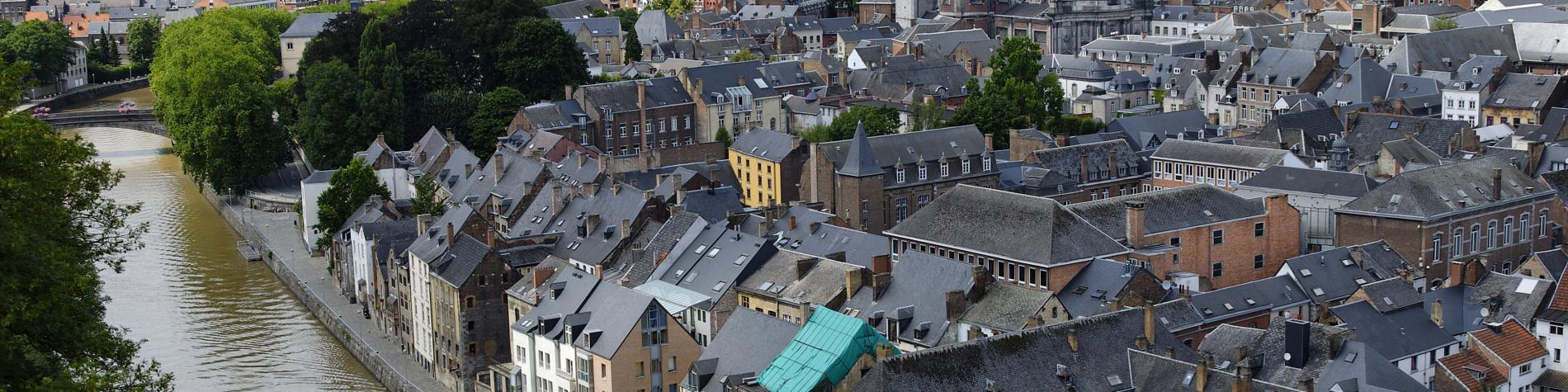 Point de vue sur la ville de Namur et son fleuve, la Meuse