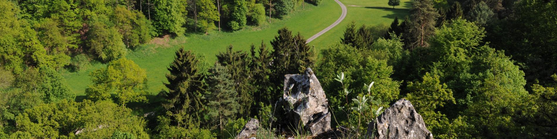 Vue panoramique du Belvédère de Han, à découvrir dans le Géopark Famenne-Ardenne