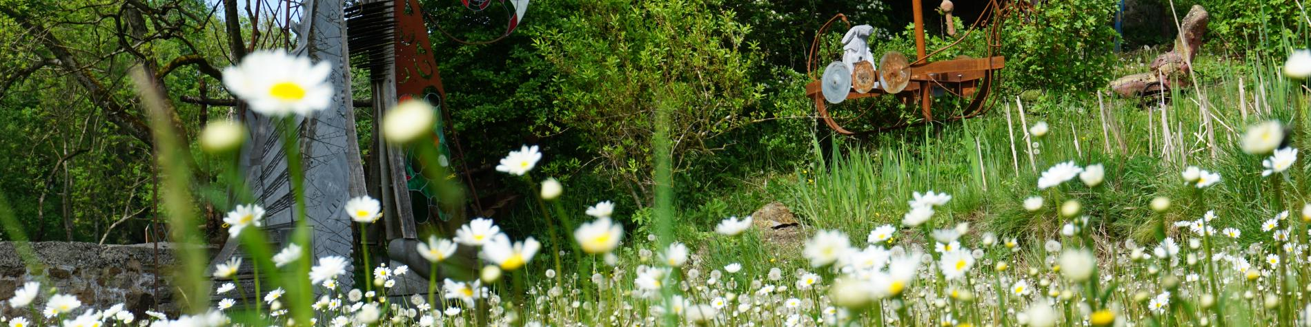 Jardin fleuri et boisé