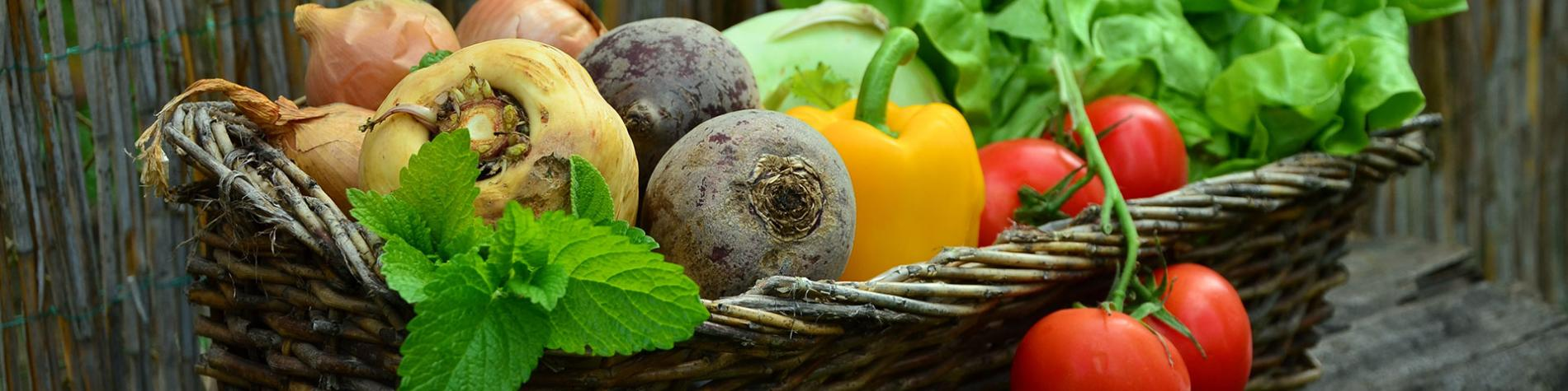 Marché bio - produits du terroir - fruit - légumes