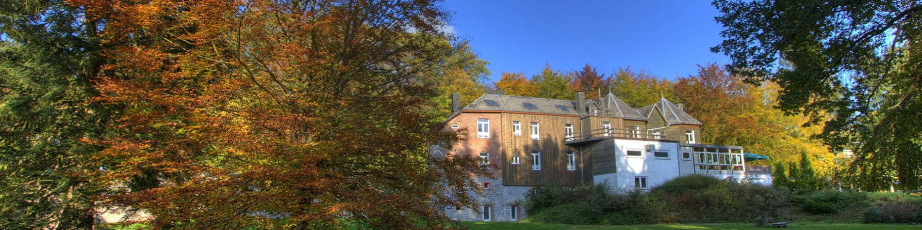 Hôtel - Parkhôtel - Villa - Vielsalm