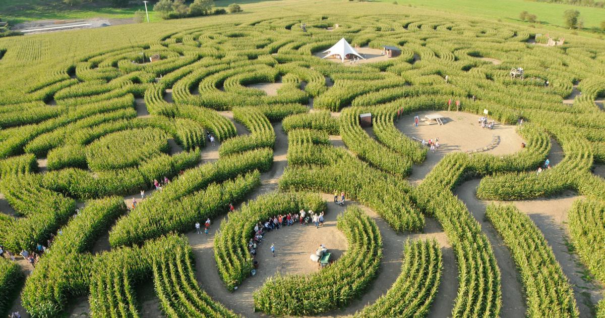 Le Labyrinthe de Durbuy   Parc d'attractions insolite en Belgique