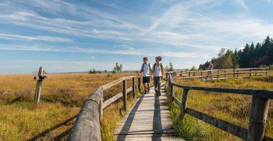 Hautes Fagnes - randonnees - caillebotis - promenade - couple