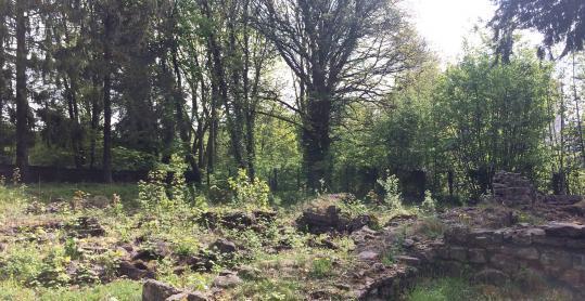 Parc archéologique - vestiges - Basilique - thermes - Ancienne Eglise St-Martin